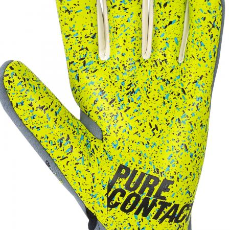 Pure Contact X-Ray 3 G3 Fusion